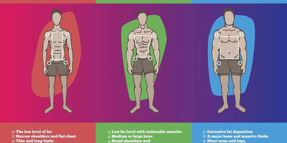 Endomorph, ectomorph, mesomorph: what does it mean for your diet and workout?